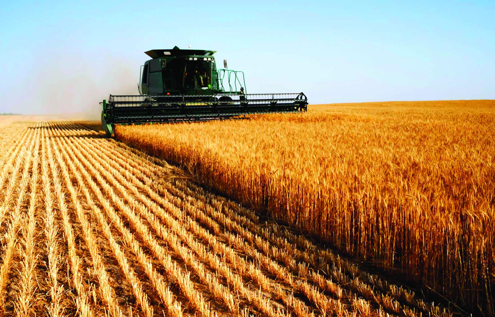 Особливості права постійного користування землею фермерськими господарствами