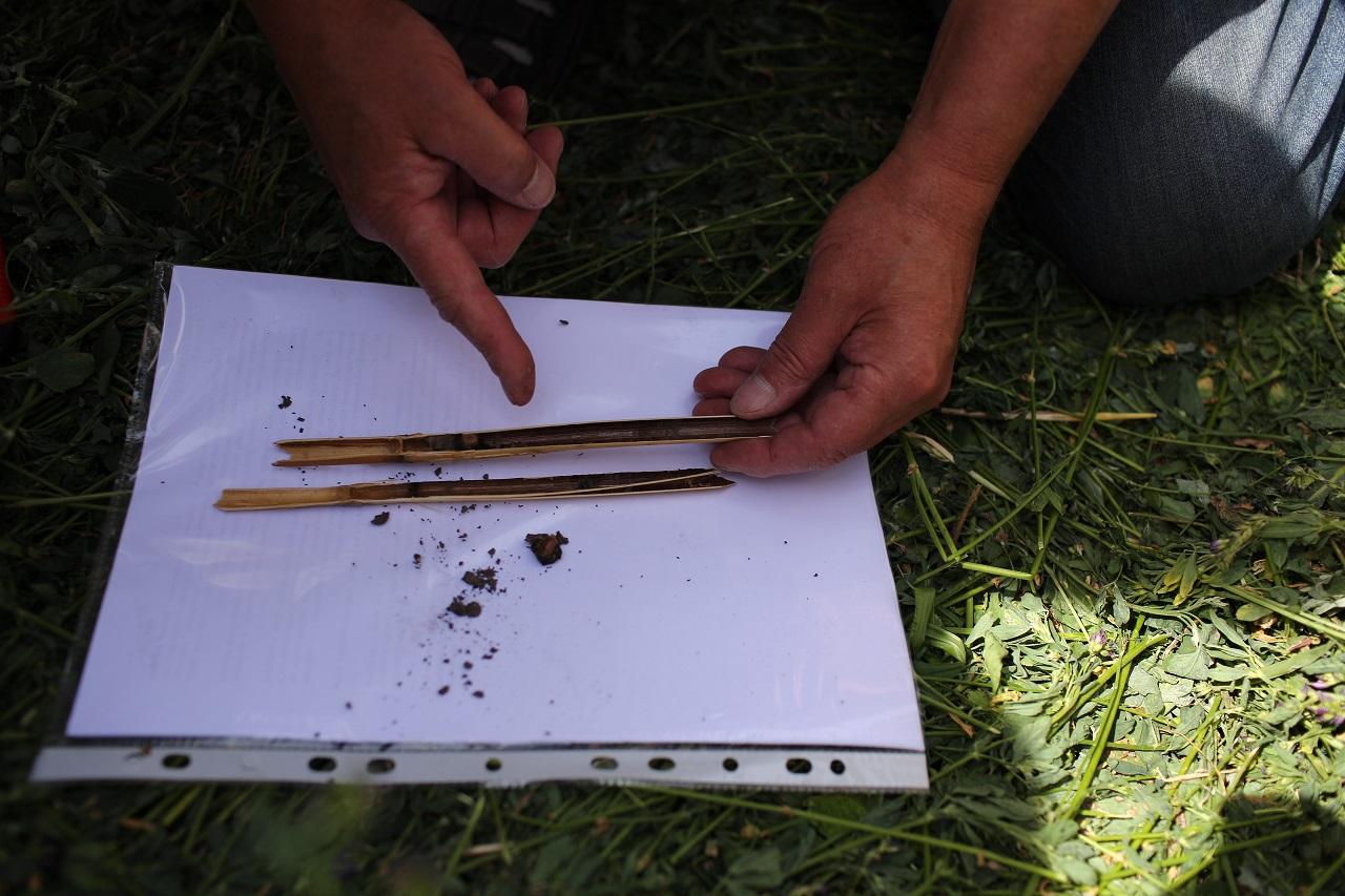 Приклади альтернативних підходів ведення господарства