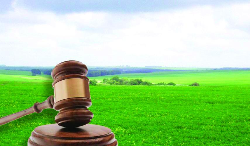 Договори оренди земельних ділянок. Як захистити своє право орендувати землю?