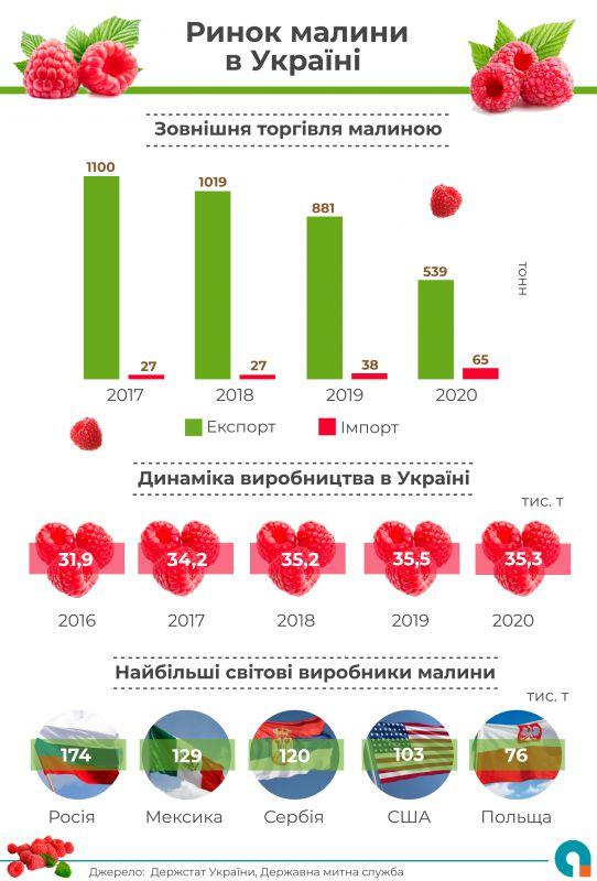 89% малини в Україні вирощується в господарствах населення